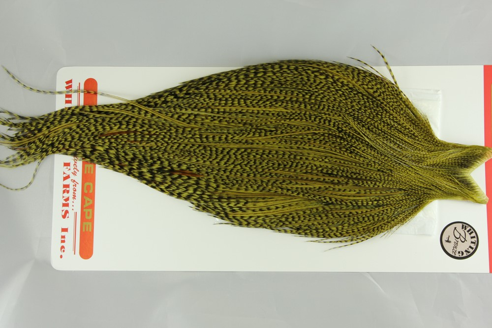 Grizzly dyed Olive Bronze Gr Cape #2262