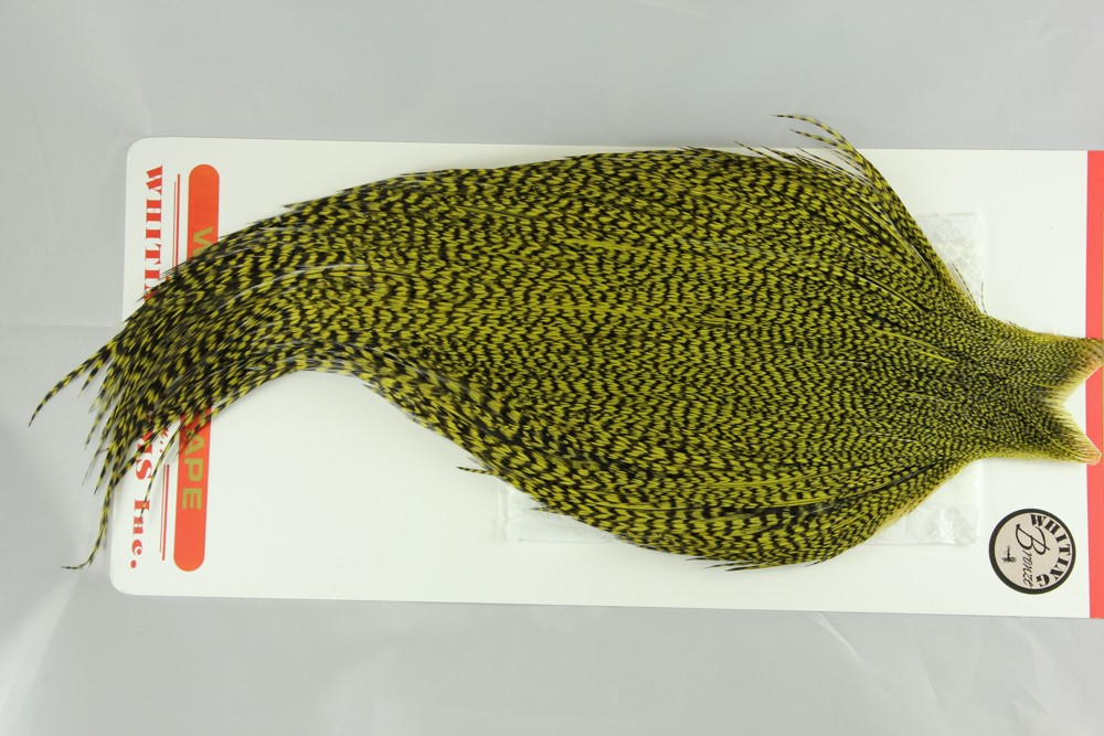 Grizzly dyed Olive Bronze Gr Cape #2265