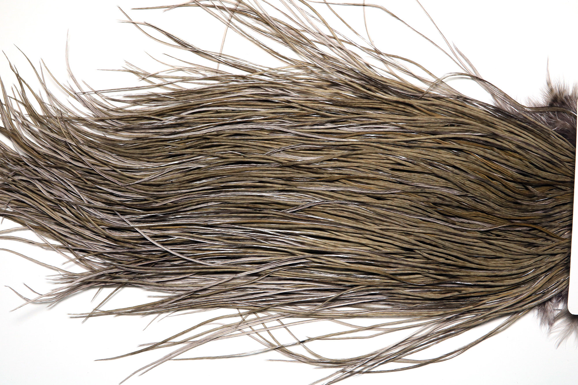 WBGMS-4096 Whiting Bronze Grade Midge Saddle White dyed Dark Dun
