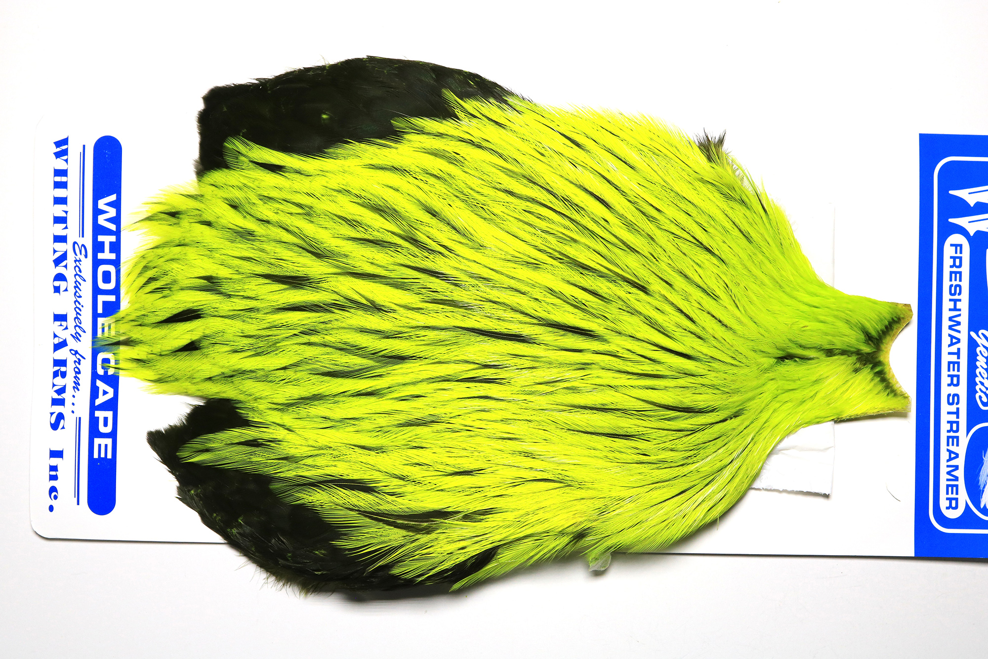 FWSC-4619 Whiting Freshwater Streamer Cape Badger dyed Flour. Yellow Chartr.
