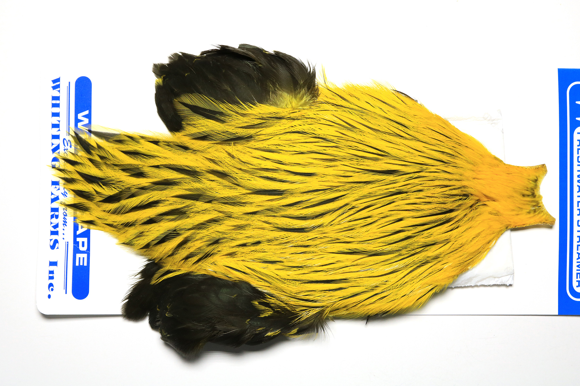 FWSC-4622 Whiting Freshwater Streamer Cape Badger dyed Yellow