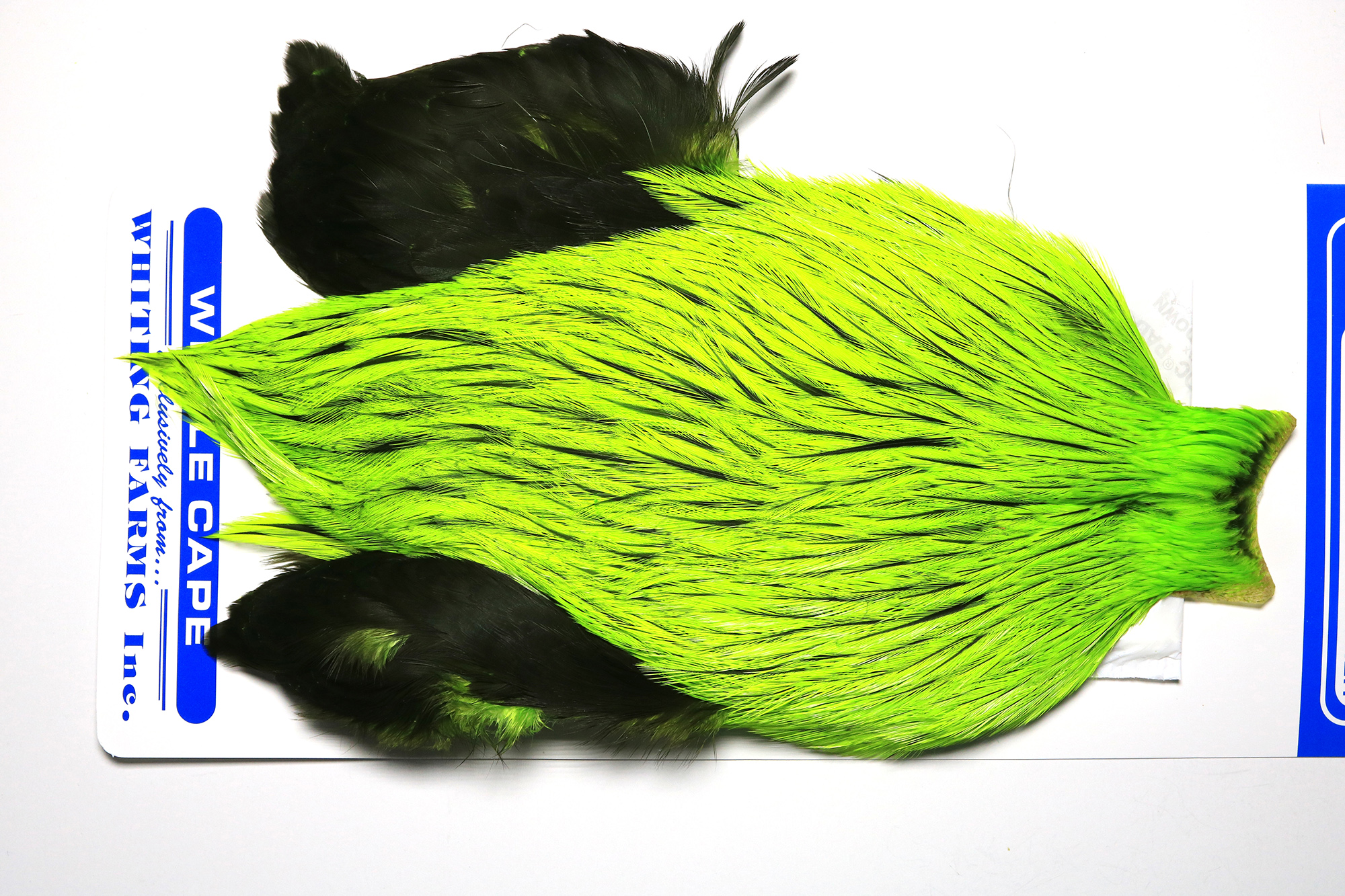 FWSC-4625 Whiting Freshwater Streamer Cape Badger dyed Flour. Green Chartr.