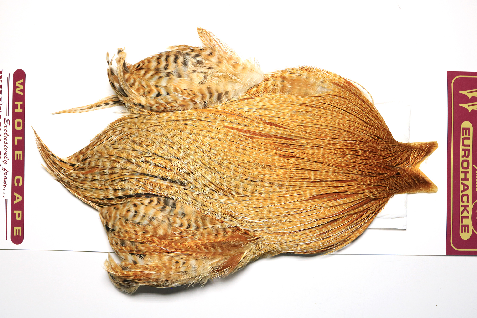 EHC--4645 Whiting Euro Hackle Cape Barred Dark Ginger