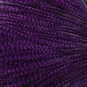 Whiting Hackle Grizzly dyed Purple