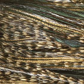 Whiting Hackle Coq de Leon Grizzly Variant